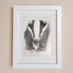 Fine Art Badger Print