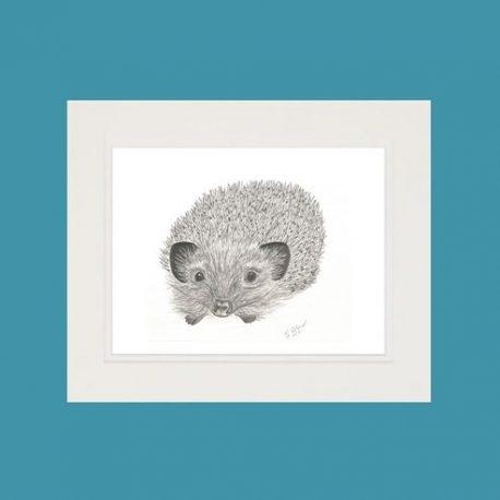 Heather the Hedgehog