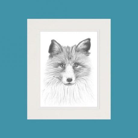 Ivy the Fox