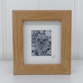 Mini Hedgehog Framed Print