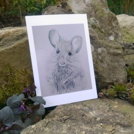 Wood Mouse Greetings Card