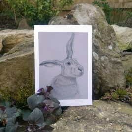 Brown Hare Greetings Cards