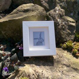 Framed Hare Print