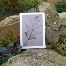 Oak Leaf Greetings Card
