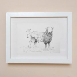Sheep & Lamb Framed