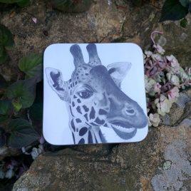 Nakuru Coasters
