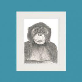 Archie the Chimpanzee Fine Art Print