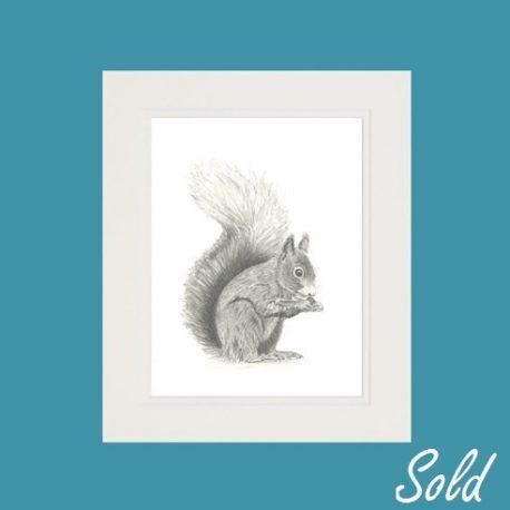 Hamish The Squirrel