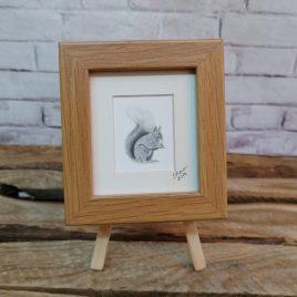 Mini Framed Red Squirrel Print