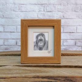 Mini Framed Orangutan Print