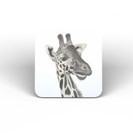 Nakuru the Giraffe Coaster