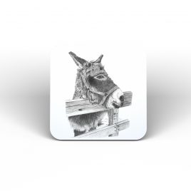 Hoti the Donkey Coaster