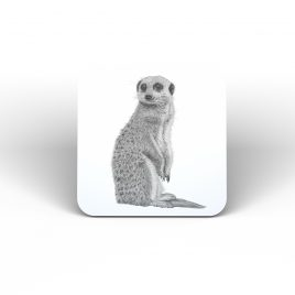 Matilda the Meercat Coaster