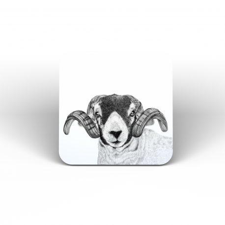 COASTER SHEEP